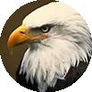 EAGLE TOWNSHIP